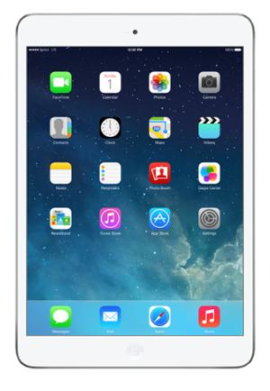 Apple iPad Mini Settings