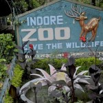 Indore Zoo Safari