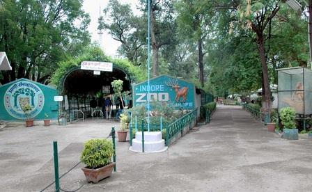Indore Zoo Safari