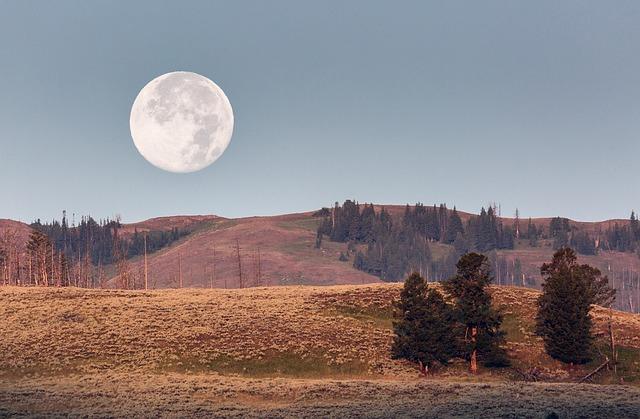 Landscape beauty at Yellowstone Park