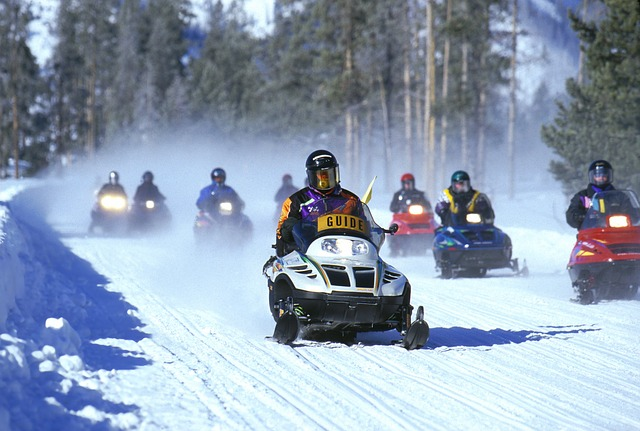 snowmobiles at Yellowstone Park