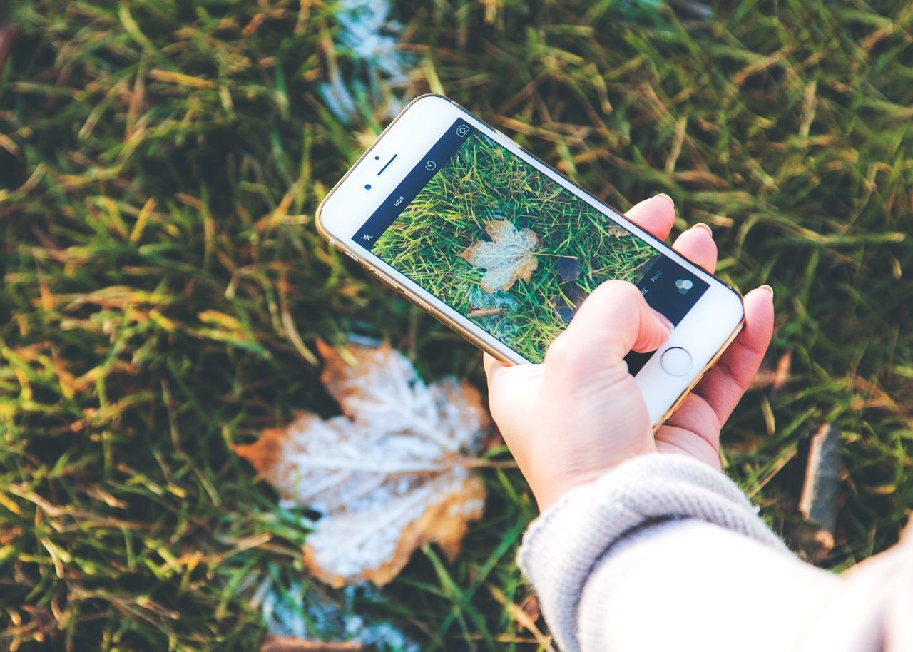 Smartphone in Garden