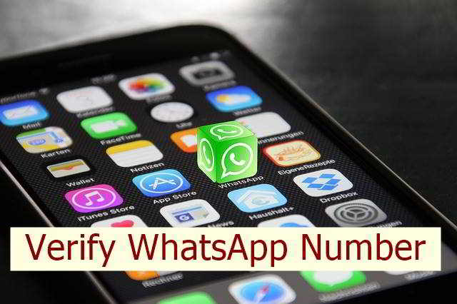Verify WhatsApp Phone Number